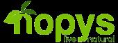 Nopys-Logo